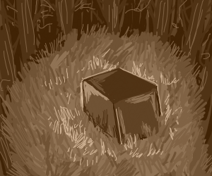 Box in a plain surrounded by a forest