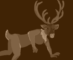 Reindeer Person