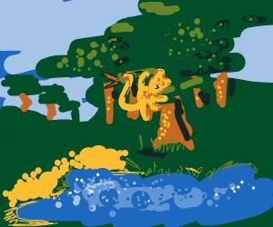 monkey in beautiful forest