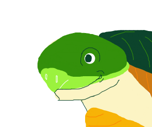 Really detailed smiling turtle