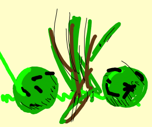 Green sticks and balls