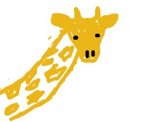 a giraff in afrika