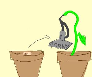 Vacuum seeds grow to a vacuum