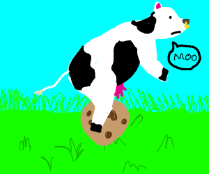 Cow rides a cookie
