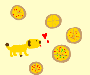 Pizza addicted yellow dog