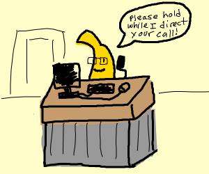 Secretary banana