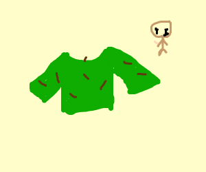 Worms invade a persons sweater