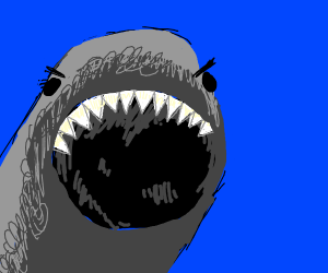 Angery shark