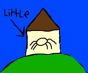Spider in a little house