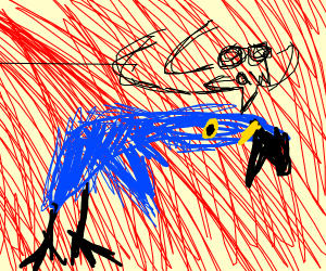 beautifully drawn parrot/macaw