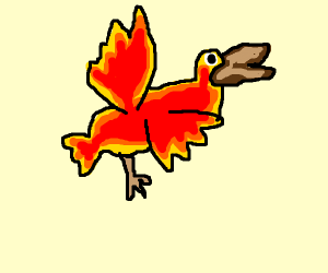 flashing phoenix