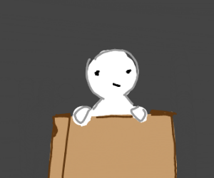 Guy in a cardboard box