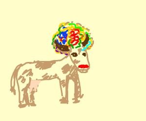 Rainbow Afro cow with red nose
