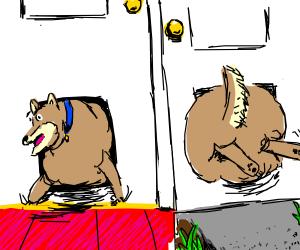 too big! dog wont fit through doggie door!