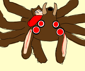 Pet spider dog