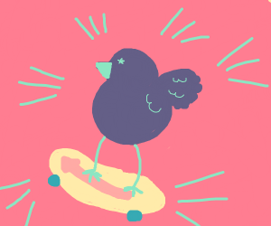 Cool bird on a skateboard