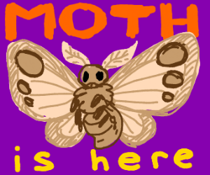 Moth is here
