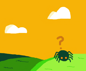 A spider has lost way in the fields