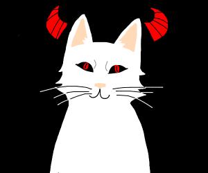 White cat has demon eyes