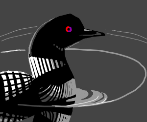 a loon (basiclly a black & white duck)