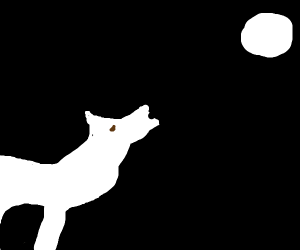 wolf howling during full moon