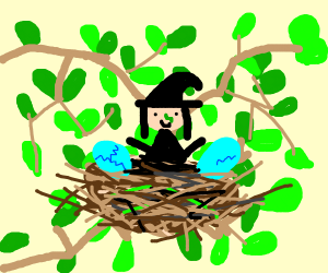 Witch in a Nest