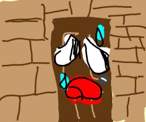 Terrified Front Door