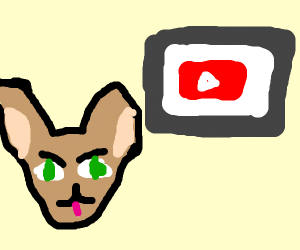 Cats watching a YT video