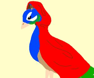 Peacock in cloak