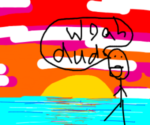 Beach in sunset with a person saying woah dud