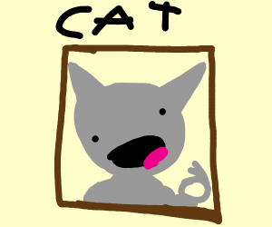 framed picture of a lovely cat