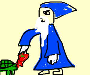 wizard feeding a turtle ketchup