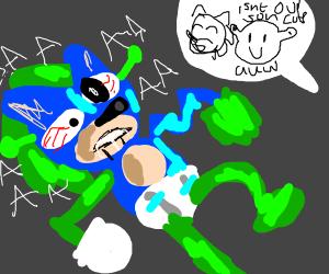 Shrek and Sonic's Child
