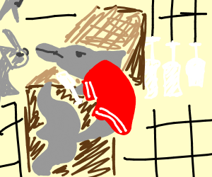 Dolphin In a red jacket working at a bar