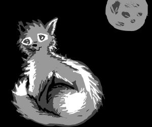 kittenswolf