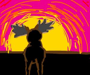 Moose during Sunset/Sunrise