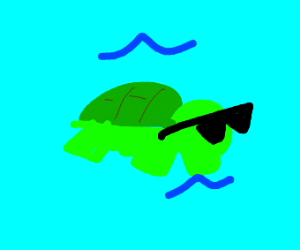 Cool turtle swimming