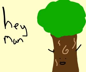 A tree saying Hi