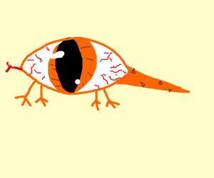 orange eye lizard