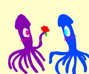 squid giving another squid flowers