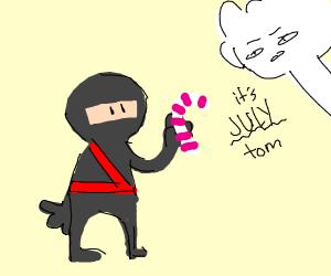 Ninja Candy Cane