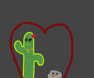 cactus and rock are best friends