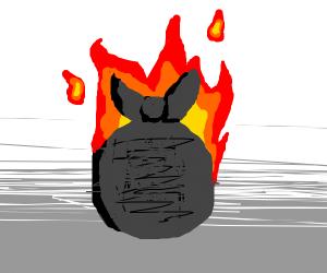 trash burns
