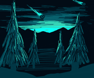 Watching a meteor shower above the trees