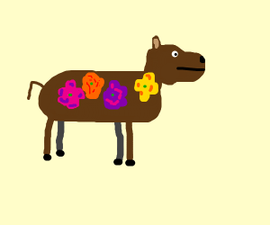 brown cow x flower