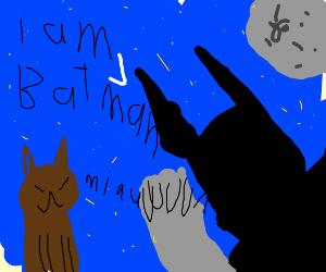 bat-man tree scaring cat