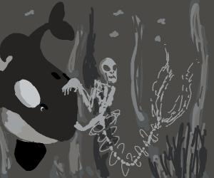 skeleton frees willy
