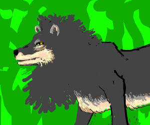 gray lion wolf