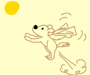 Puppy with wings flies into the sun