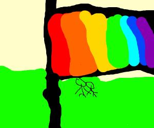 A rainbow finish flag